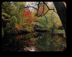 —Lagoon at Stan Hywet - H K Barnett photo
