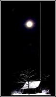 —Silent Night